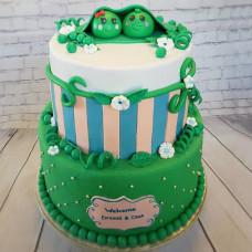 Торт на годик близнецам
