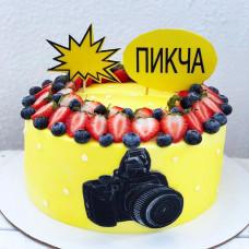 Торт фотоаппарат без мастики