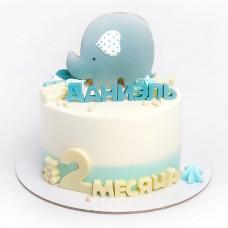 Торт на 2 месяца мальчику