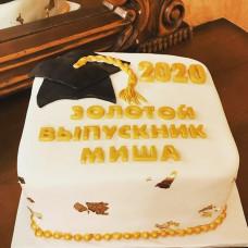 Торт выпускнику из ВУЗа