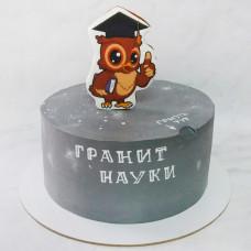 Торт с совой на выпускной