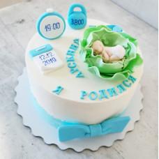 Торт капуста с младенцем на выписку из роддома