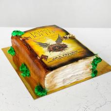 Торт в виде Гарри Поттера