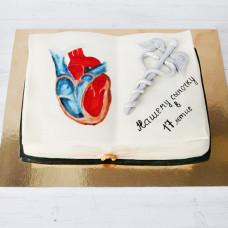 Торт учебник