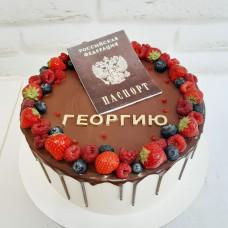 Торт с паспортом на 14 мальчику