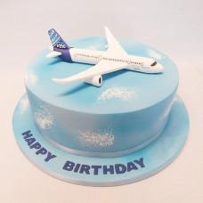 Торт на день рождения пилота