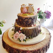 Торт на деревянную свадьбу с совами