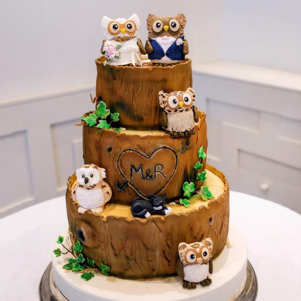 Торт с прикольными совами на свадьбу